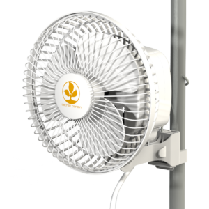 Monkey Fan 16W UK
